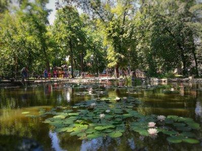 Nyugalmas parkok